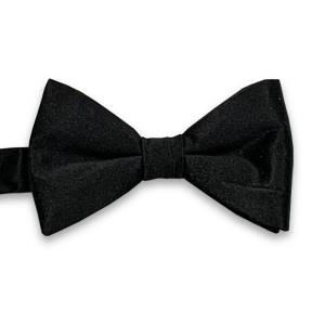 Silk Satin Bow Ties