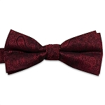 Raspberry Jazz Paisley Bow Tie #BT130T-65