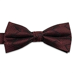 Burgundy Wave Bow Tie #BT132T-45