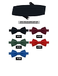 CLASSIC POLY SATIN XL CUMMERBUND - ASSORTED COLORS