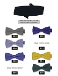 CLASSIC POLY SATIN CUMMERBUND - ASSORTED COLORS CLOSEOUT