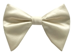 CHAMPAGNE BUTTERFLY BOW TIE & HANKIE SET