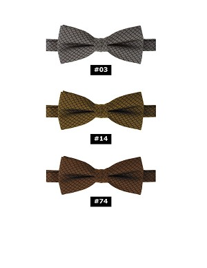 "APEX 2"" PRE-TIED BOW TIE - ASSORTED COLORS"