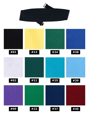 NEIL ALLYN BOY'S FORMAL SATIN CUMMERBUND - ASSORTED COLORS