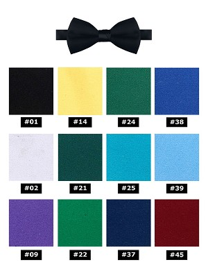 "NEIL ALLYN 2"" FORMAL SATIN BOW TIE - ASSORTED COLORS"